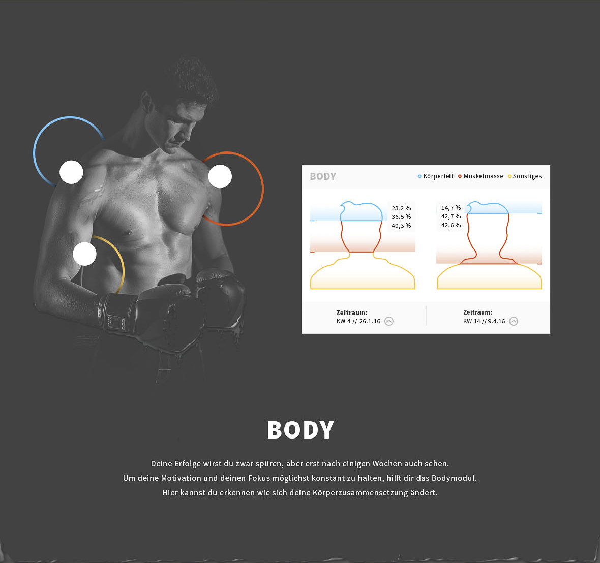 body_dashboard