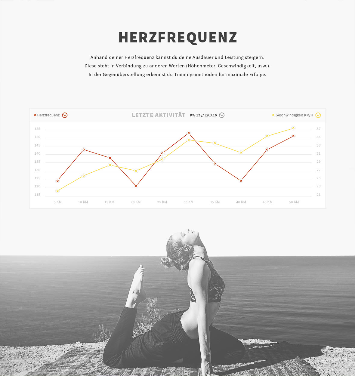 herzfrequenz_dashboard